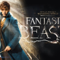 Review - Fantastic Beasts (And Where To Find Them) (2016)